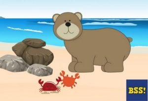 The Bear And The Crabs