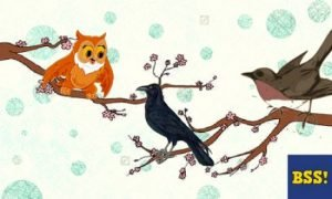 The Crow, Cuckoo And The Owl