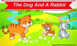 The Dog And The Rabbit