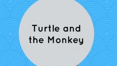 Photo of The Monkey And The Turtle