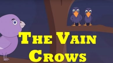 Photo of The Vain Crows